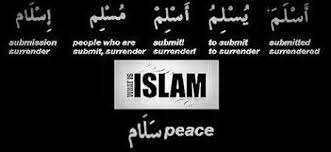 Islam meaning